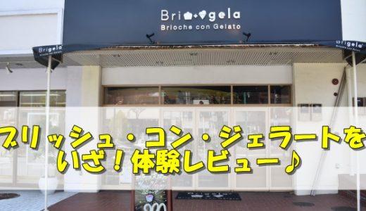 松田翔太とギャル曽根の「ブリッシュコンジェラート」を体験レビュー